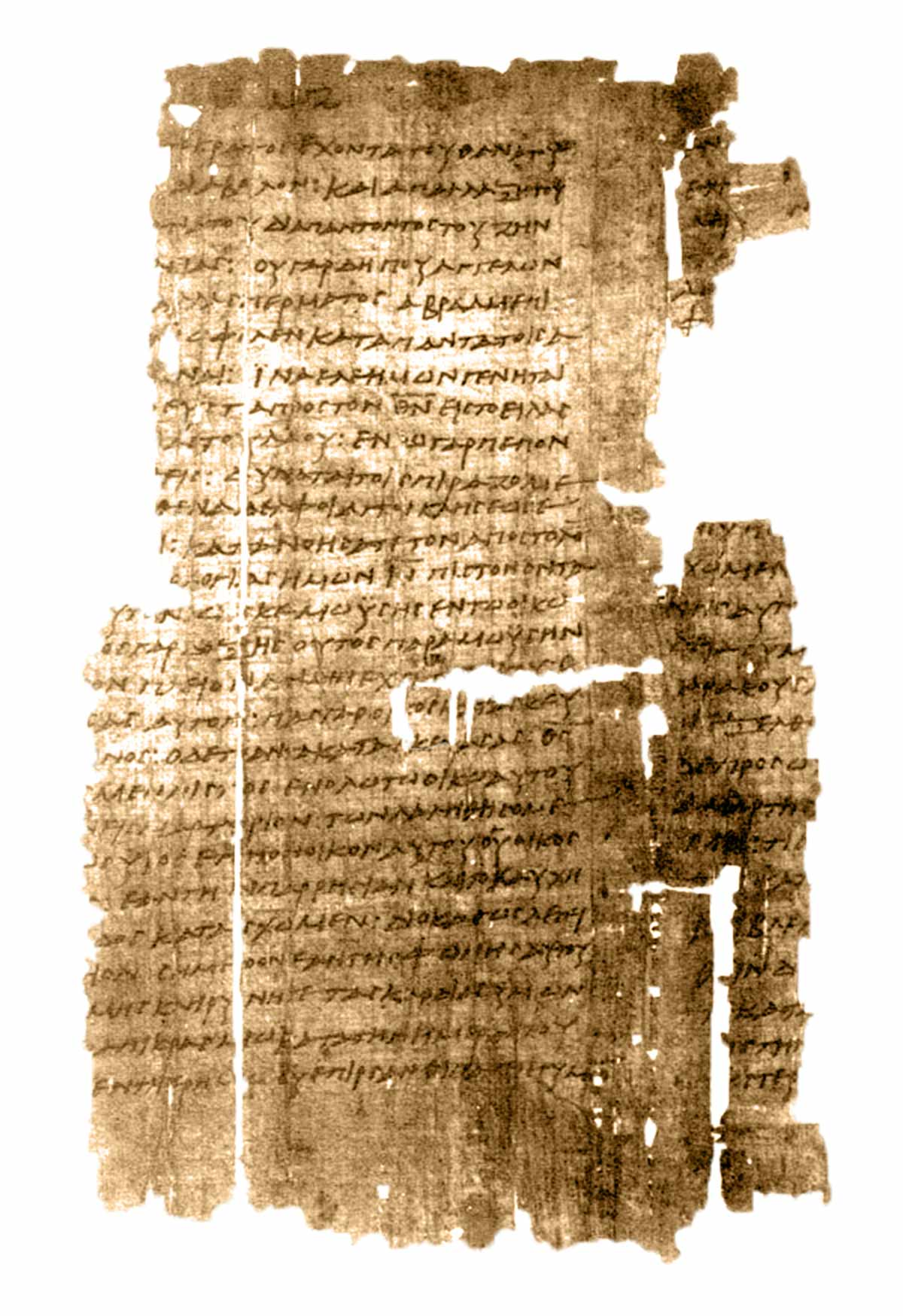 Pictures of Papyrus 13